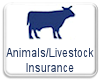 Animals and Livestock Insurance