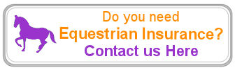 Need Equestrian or Equine Insurance Assistance?